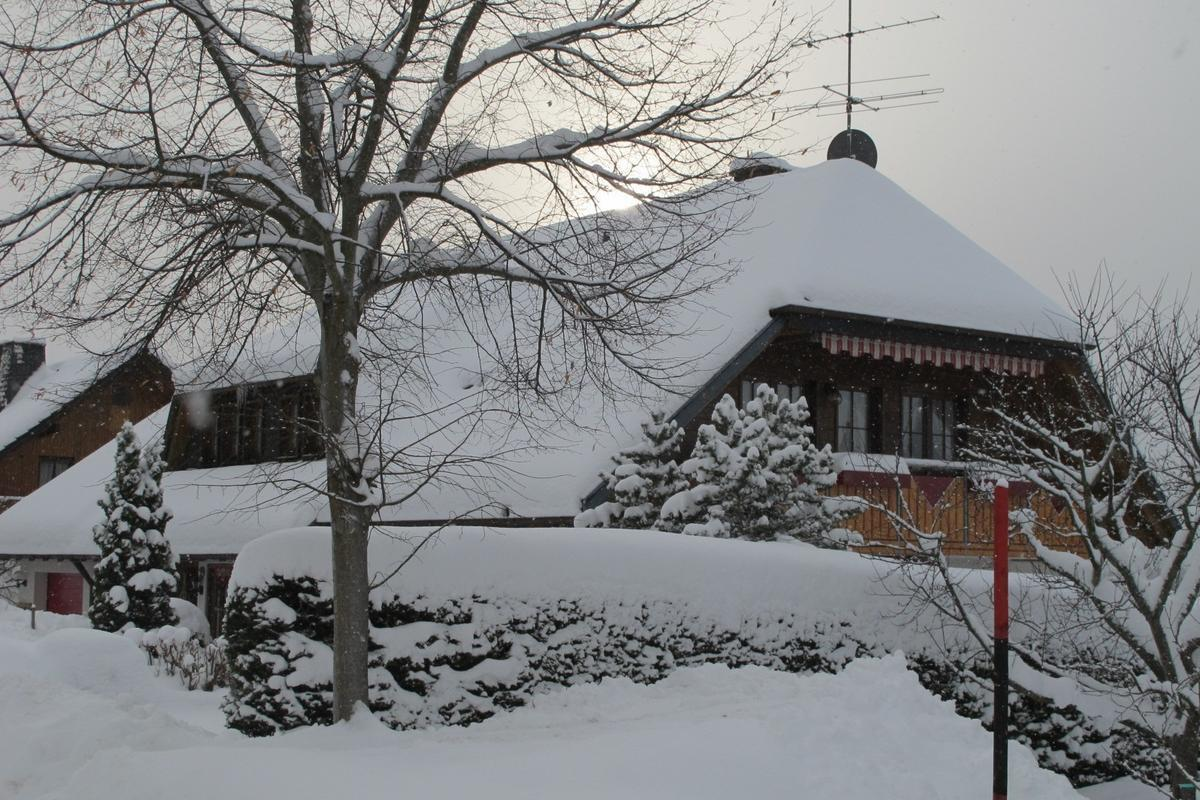 Haus Leufke in winter